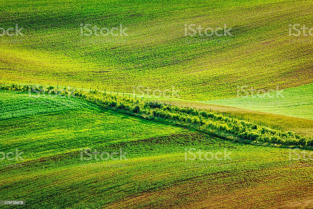 Abstract pattern of rolling fields stock photo