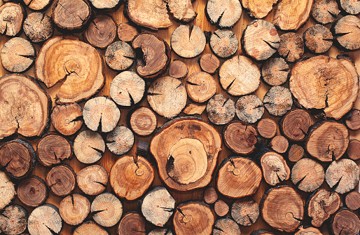 Abstract photo of a pile natural wooden logs background