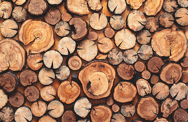 abstract photo of a pile natural wooden logs background - boomstronk stockfoto's en -beelden