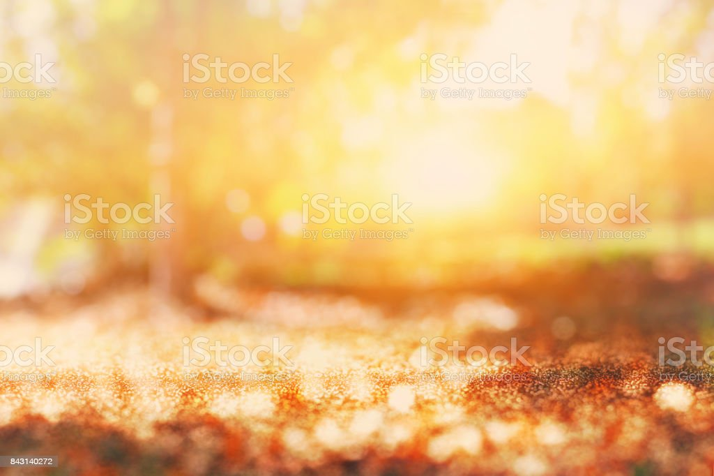 abstract photo of light burst among trees and glitter bokeh lights. image is blurred and filtered stock photo