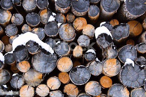 Abstract pile of logs during winter.