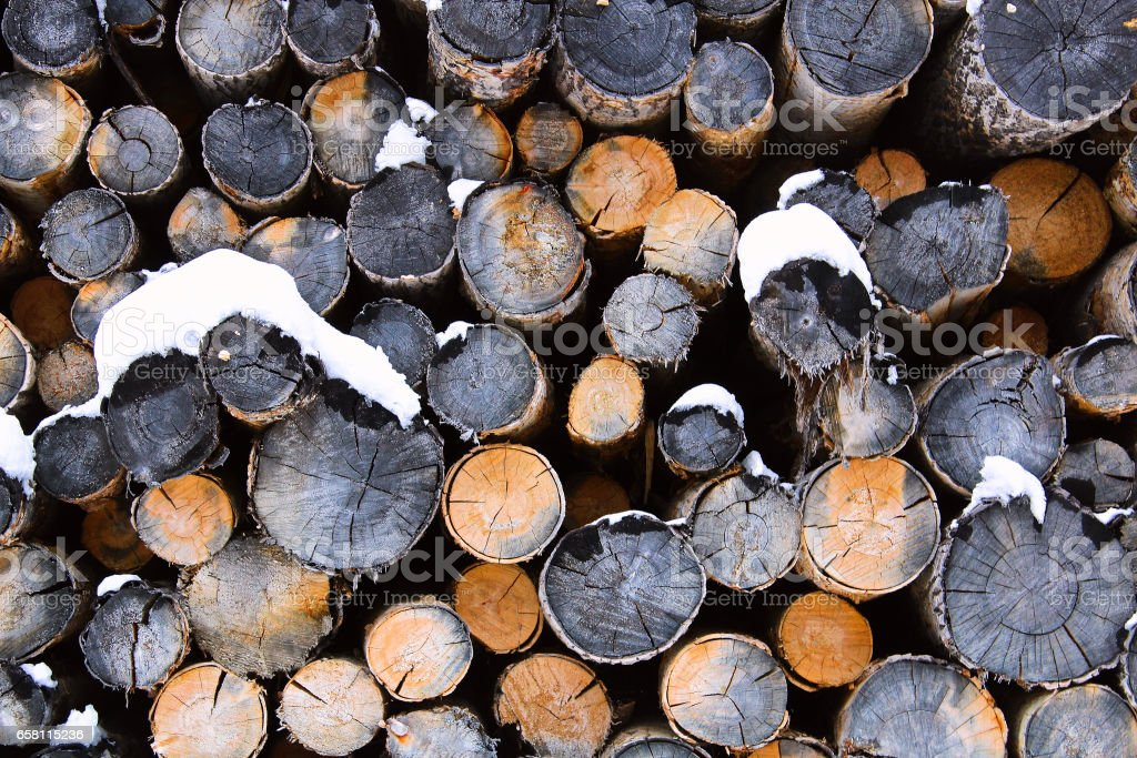 Abstract pile of logs during winter stock photo