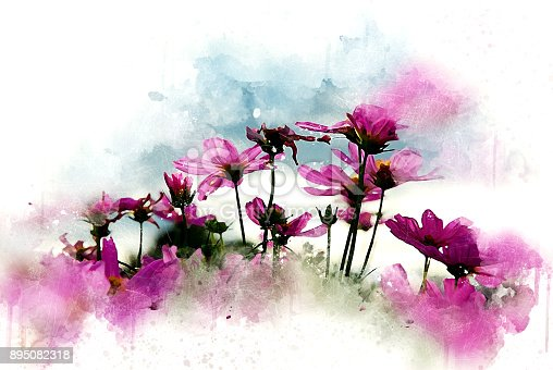 istock Abstract pink flower blooming on colorful watercolor painting background and Digital illustration brush to art. 895082318