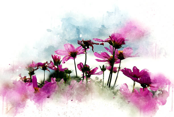 Abstract pink flower blooming on colorful watercolor painting background and Digital illustration brush to art. stock photo