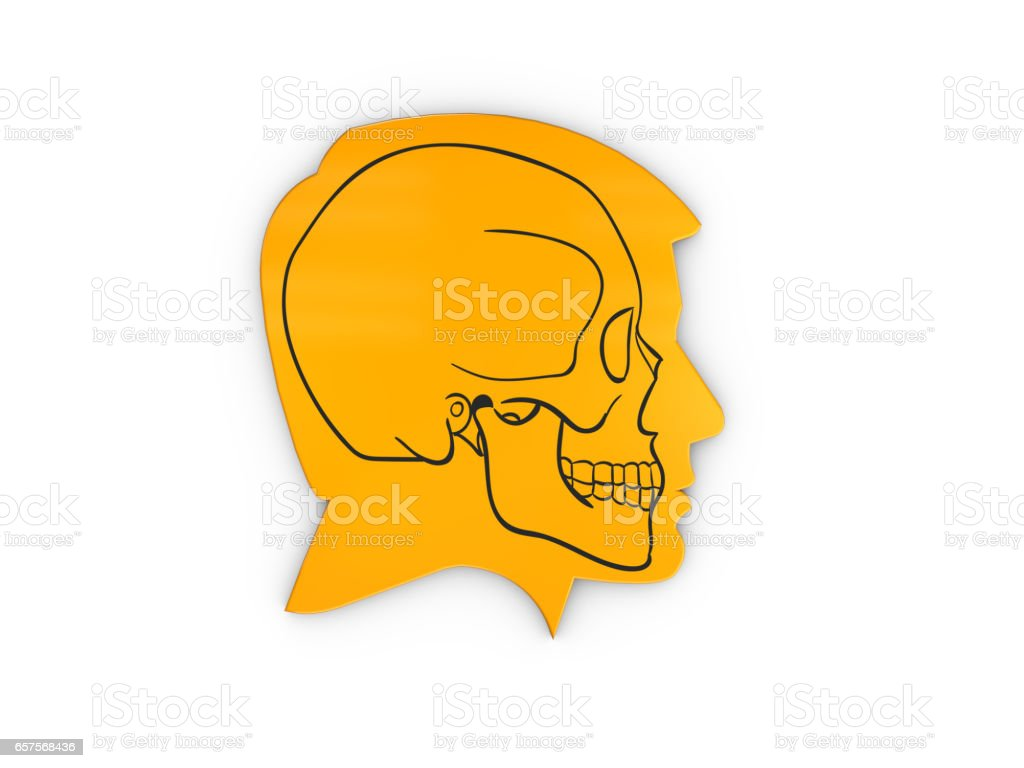 Abstract Profile a human head and skull, 3d Illustration isolated White stock photo