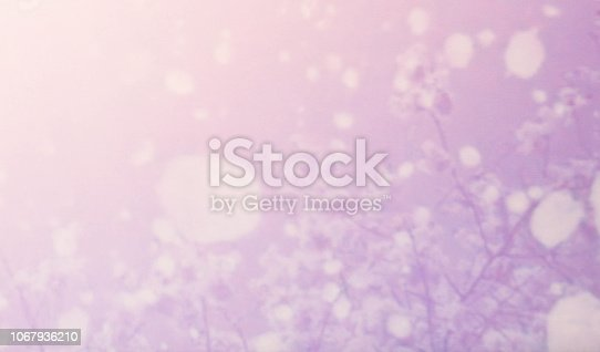 652288118istockphoto Abstract purple pink  background 1067936210