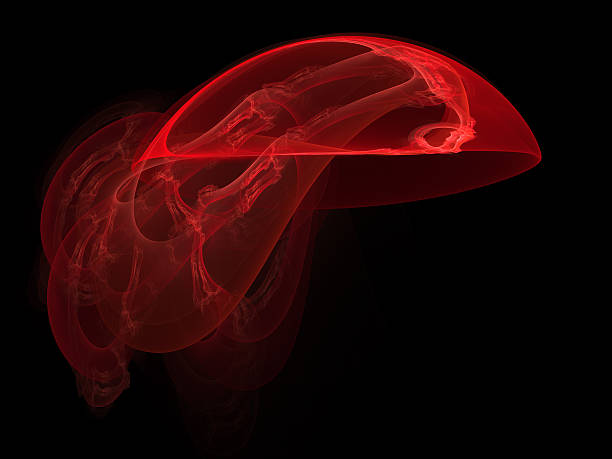 abstract red jellyfish stock photo