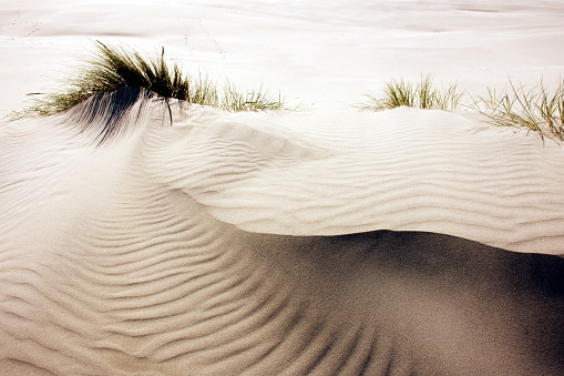 A Close-Up Abstract Rippled Sand Nature Background.