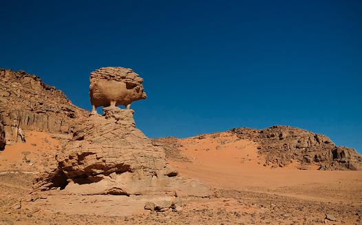 Remote camel caravan in the desert