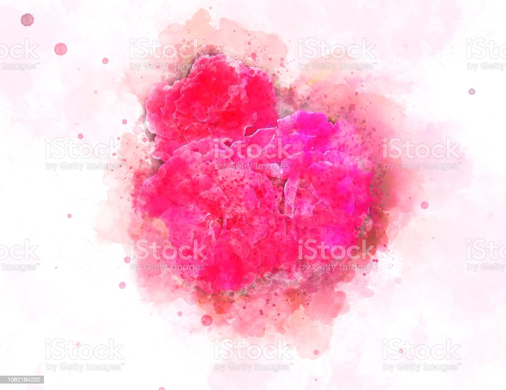 Abstract Rose Pink Flower Blooming On Colorful Watercolor