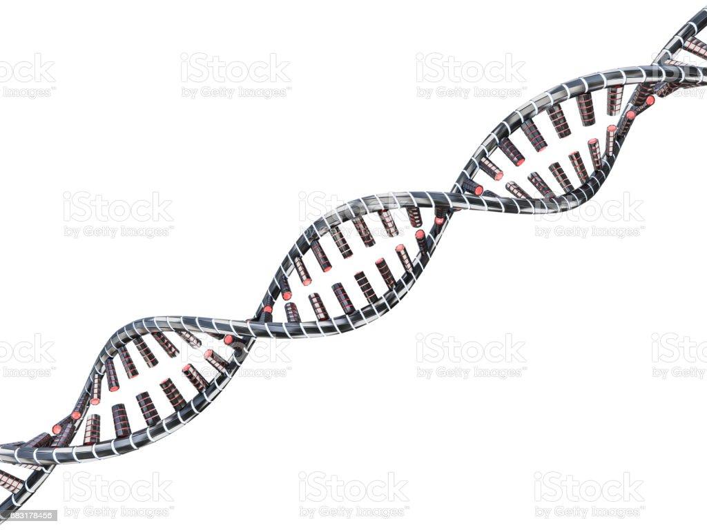抽象的科學背景與 DNA 鏈。3D 渲染 免版稅 stock photo