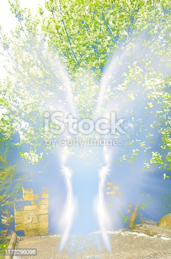 istock Abstract shape of an angel 1172296098