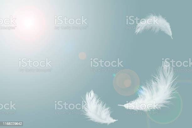 Photo of abstract solf white feathers floating in the air