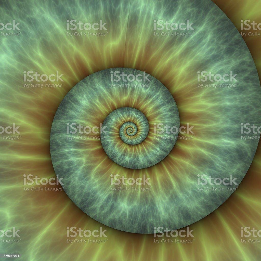 Abstract spiral pattern. fibonacci pattern stock photo