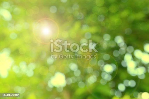 639809128istockphoto Abstract spring image. Blurred tree branch with bokeh. 604868382