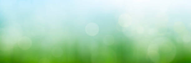 Abstract spring meadow background stock photo