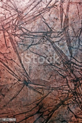 istock Abstract texture with structure of autumn leaves 181276670
