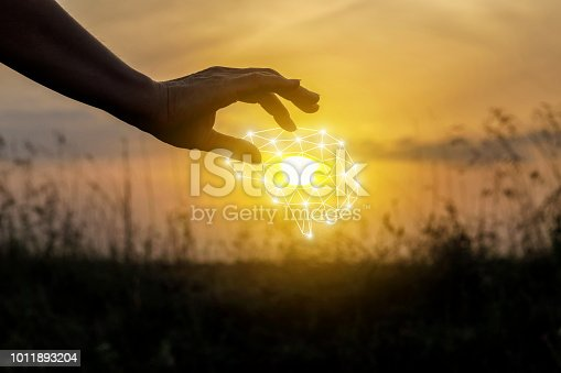istock Abstract the fingers of the hands touching the brain. 1011893204