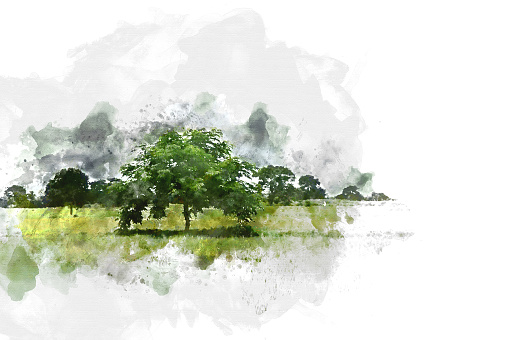 Abstract tree and field landscape in Thailand on watercolor illustration painting background.