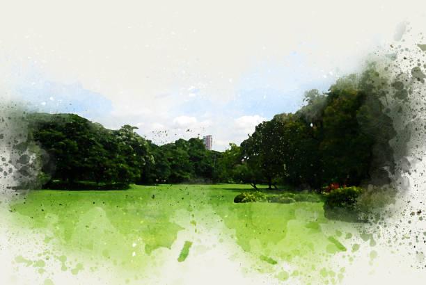 baum und feld landschaft auf aquarell illustration malerei hintergrund abstrahieren. - farbfeldmalerei stock-fotos und bilder