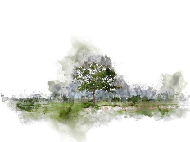 baum und feld landschaft auf aquarell illustration malerei hintergrund abstrahieren. - gartenillustration stock-fotos und bilder