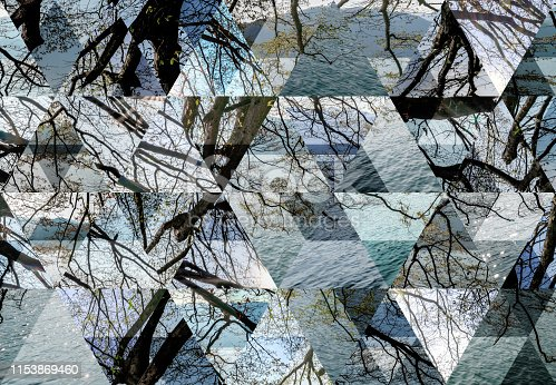 Abstract triangle mosaic background: Lake Orta tree