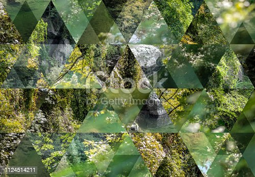 Abstract triangle mosaic background: Nature outdoors plants