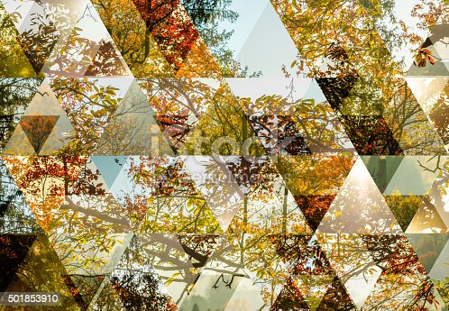 istock Abstract triangle shaped background: Autumn landscape 501853910