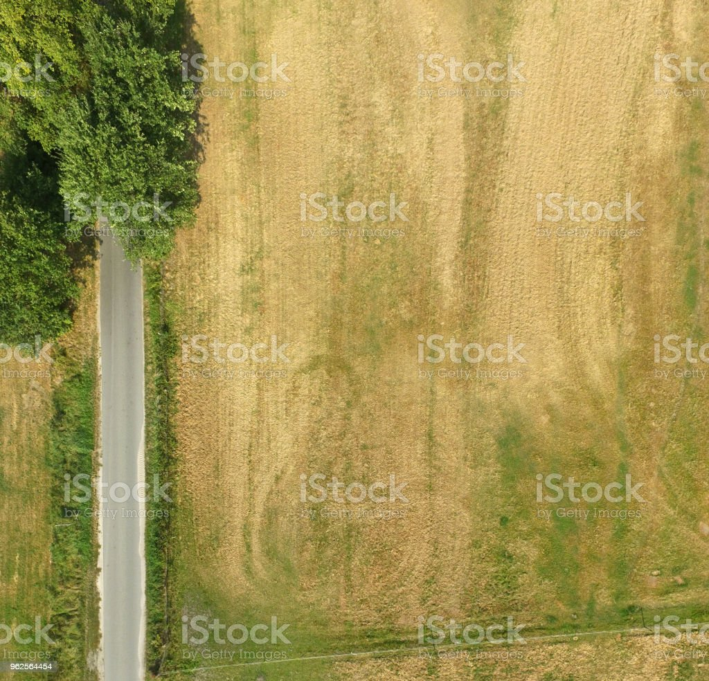 Abstract vertical aerial view of a path at a field with a few trees and bushes in the corner of the picture stock photo
