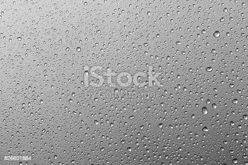 istock abstract water drops on a silver background.water drops on metal silver background texture 826601884