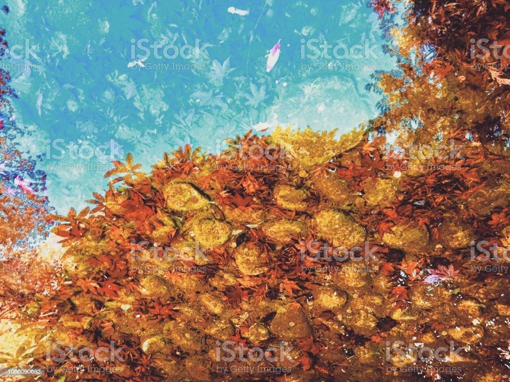 Abstrakte Wasserreflexion Blätter – Foto
