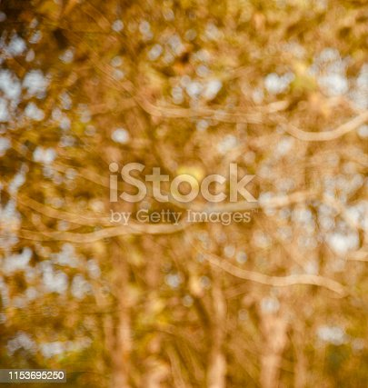 837011202istockphoto Abstract yellow blurry background photo 1153695250
