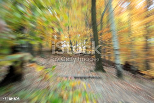 Abstract zoom tunnel view in the forest; Blurred motion through zooming technique; Germany, Europe