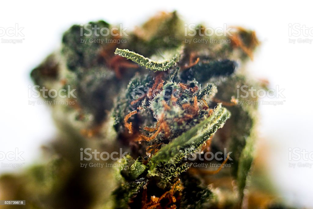 Abstracting the Nug stock photo