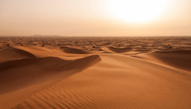 abu dhabi desert stockfoto - sand dune stock photos and pictures