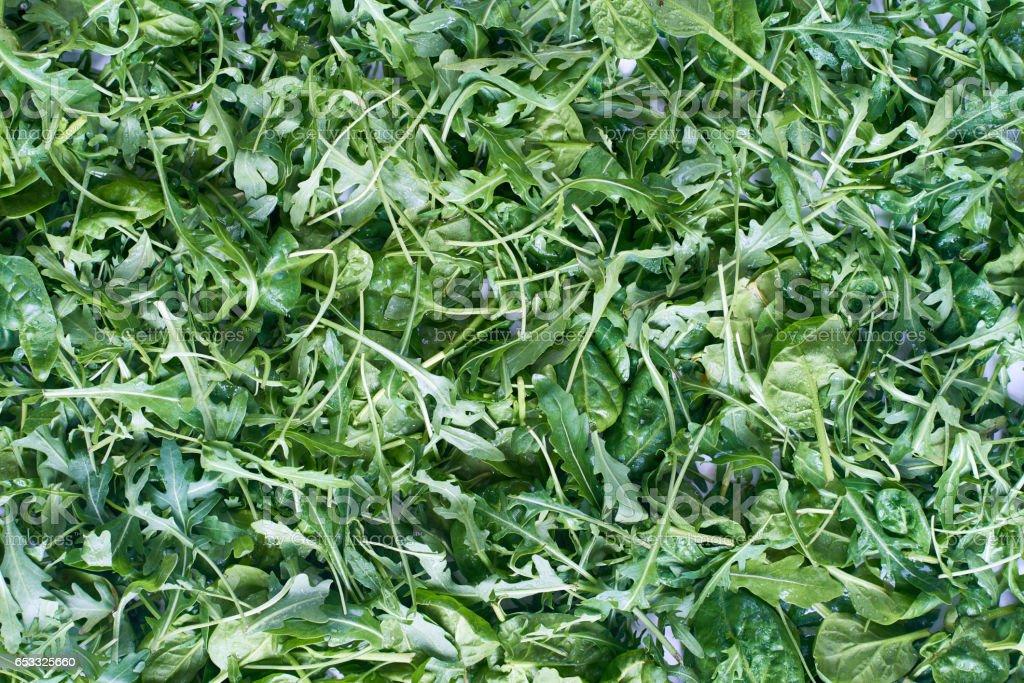 Abundance of fresh greens stock photo