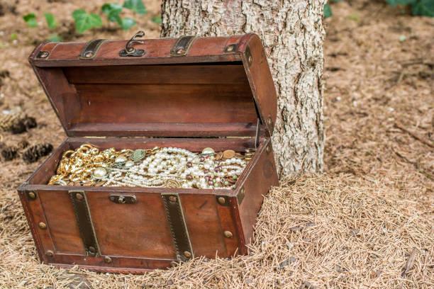 reiche schatztruhe im wald - goldgefüllte kette stock-fotos und bilder