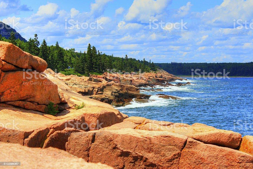 acadia coastline stock photo