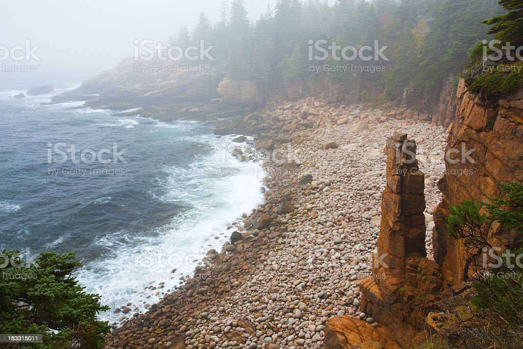 Acadia Rocky Coast stock photo