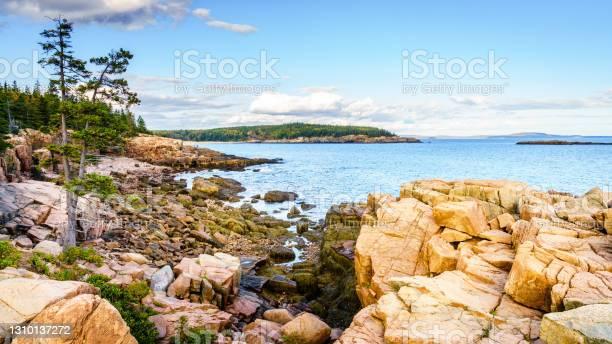 Photo of Acadia seashore