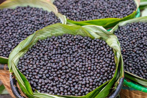 Acai - Amazon fruit