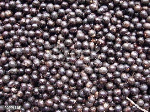 istock Acai Fruit Harvest 120504418