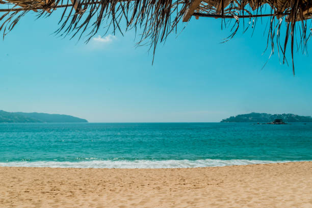 Acapulco beach landscape stock photo