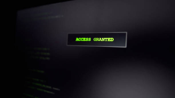 Access granted on screen, computer criminal hacking website, successful attempt stock photo