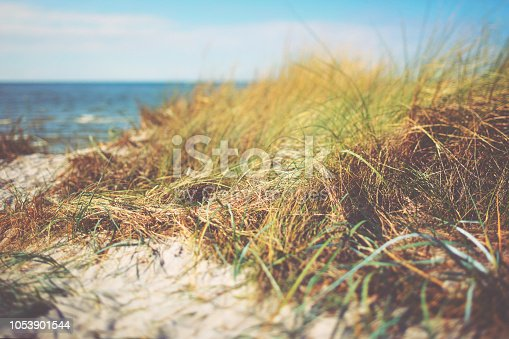 Access to a quiet sandy beach at the Baltic Sea, Hiddensee in Germany on a cloudy day