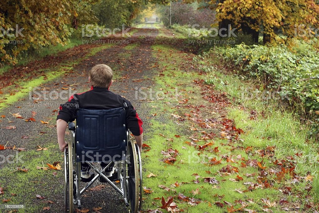Accessible Trail royalty-free stock photo