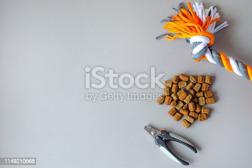 Accessories and pet food on a gray background. Minimalism. There is a place for text.