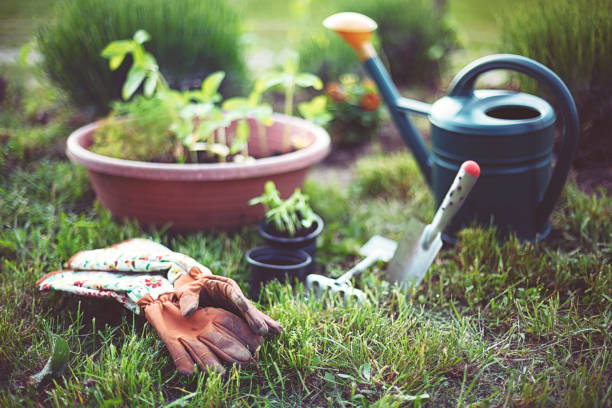 Accessories for gardening in summer stock photo