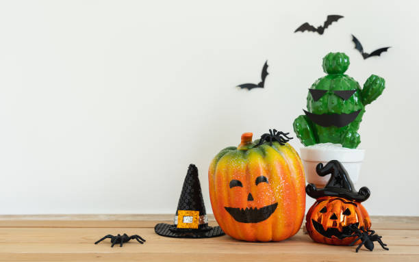 Accessories of decorations Happy Halloween day background concept.Jack O Lanterns cactus with spooky pumpkins object to party season with spider on modern rustic brown & white stone backdrop. stock photo