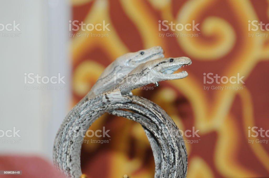 accesorios cinturón de piel de serpiente - Foto de stock de A la moda libre de derechos